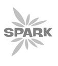Spark and the Kids + Creativity Network